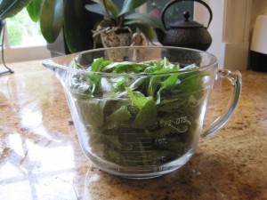 8 Cups of Unblanced Basil